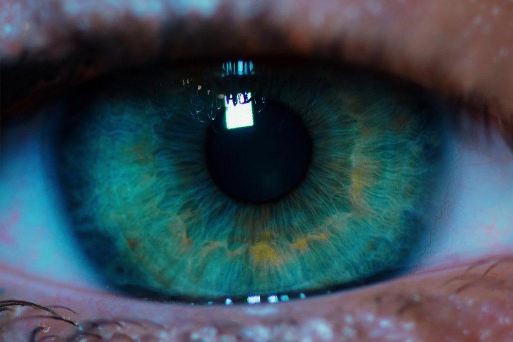color-de-los-ojos