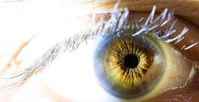 curiosidades-sobre-los-ojos